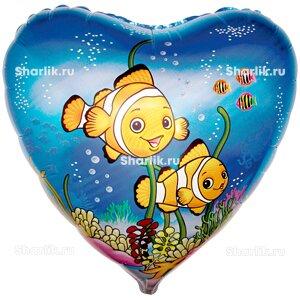 Шарик-сердце Рыбки-клоуны