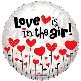 Фигурный шар Love is in the air (прозрачный)